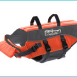 Top 10 Best Dog Life Jackets in 2018 Reviews